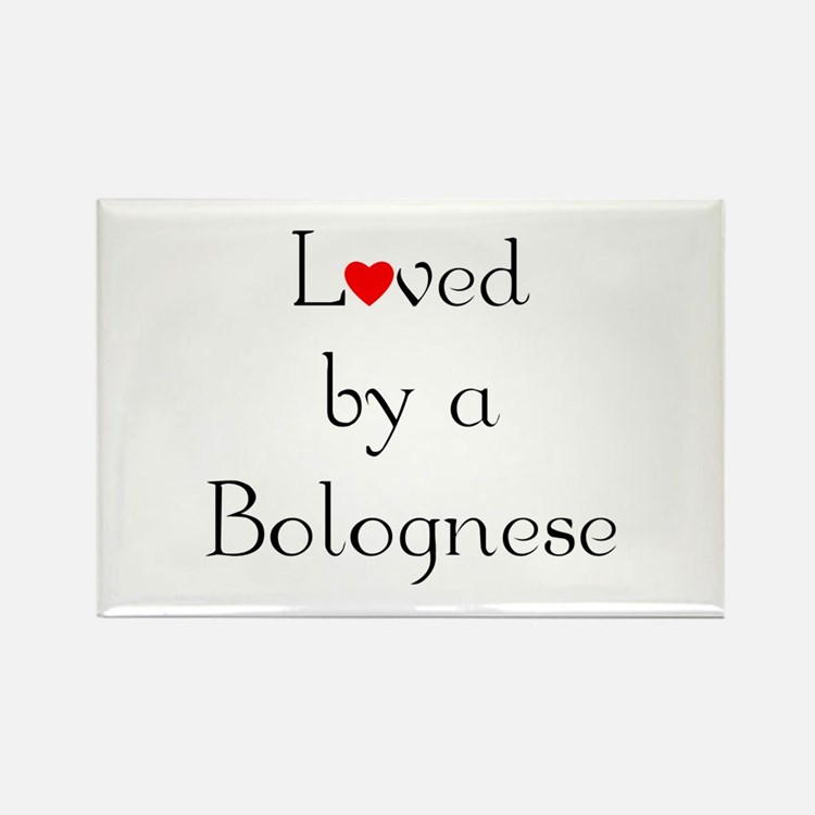 Loved by a Bolognese Rectangle Magnet (100 pack)