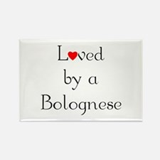 Loved by a Bolognese Rectangle Magnet (10 pack)