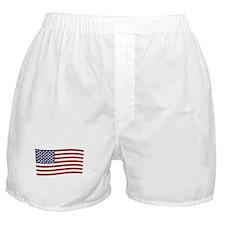 Waving American Flag Boxer Shorts