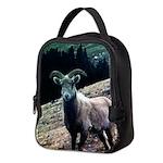 Mountain Sheep Neoprene Lunch Bag