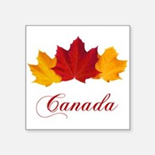 Canadian Maple Leaves Sticker