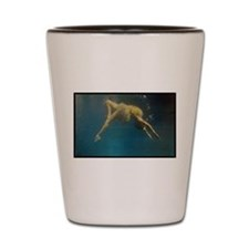 water ballet Shot Glass