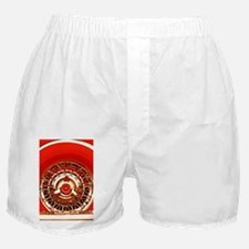 Red T-Bird Boxer Shorts