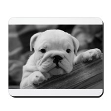 Bulldog Puppy Mousepad