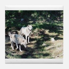 """""""Two Wolves In Early Summer"""" Tile Coaster"""