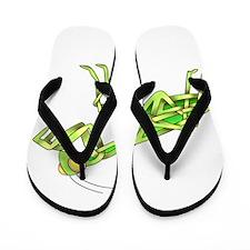 Mantis Flip Flops