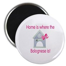 Home is where the Bolognese is Magnet