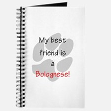 My Best Friend is a Bolognese Journal