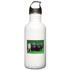 4 micro pigs in a row Sports Water Bottle