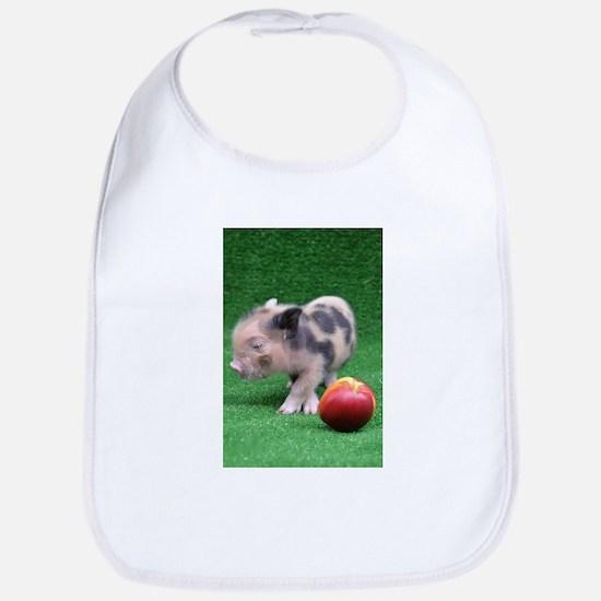 Baby micro pig with Peach Bib