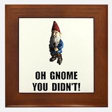 Gnome You Didnt Framed Tile