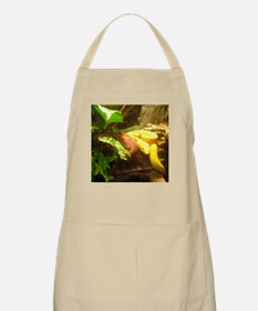 eyelash vipers BBQ Apron
