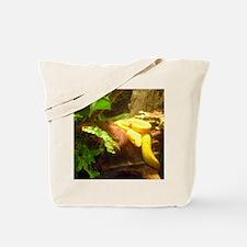 eyelash vipers Tote Bag