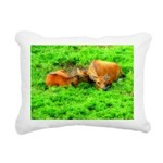 orton two cows2.png Rectangular Canvas Pillow