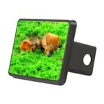 orton two cows2.png Hitch Cover