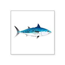 "Little Tunny False Albacore Square Sticker 3"" x 3"""