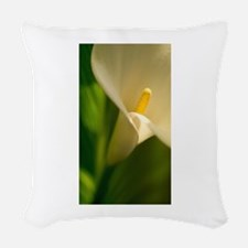 j0398995.jpg Woven Throw Pillow