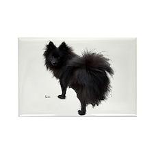 Black Pomeranian Rectangle Magnet
