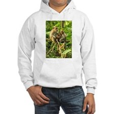 Togetherness on a Branch Hoodie
