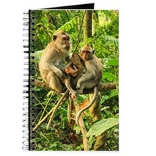 Togetherness on a Branch Journal