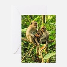 Togetherness on a Branch Greeting Card