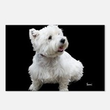 West Highland White Terrier Postcards (Package of