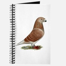 Show Racer Red Check Pigeon Journal