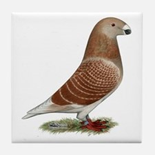 Show Racer Red Check Pigeon Tile Coaster
