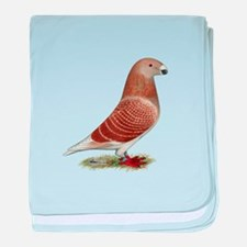 Show Racer Red Check Pigeon baby blanket
