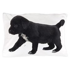 Labrador Retriever Puppy Pillow Case