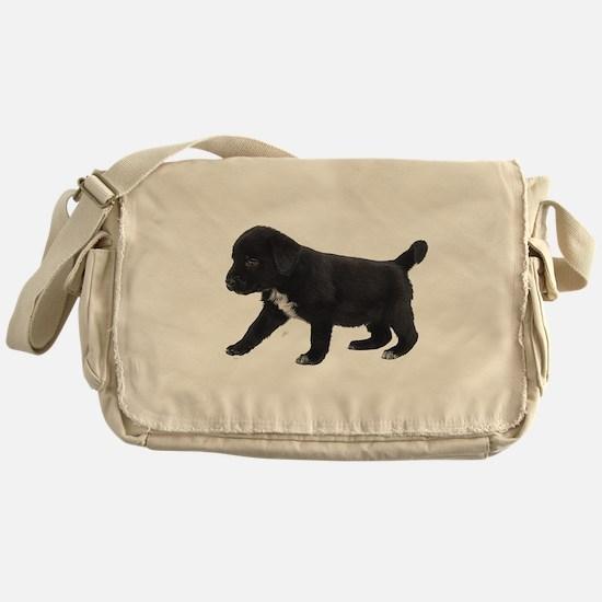 Labrador Retriever Puppy Messenger Bag