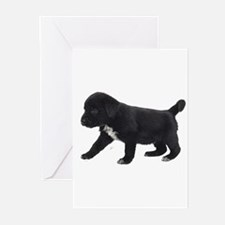 Labrador Retriever Puppy Greeting Cards (Pk of 10)