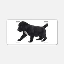 Labrador Retriever Puppy Aluminum License Plate