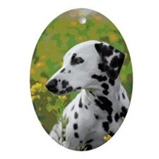 DALMATION MEADOW Ornament (Oval)