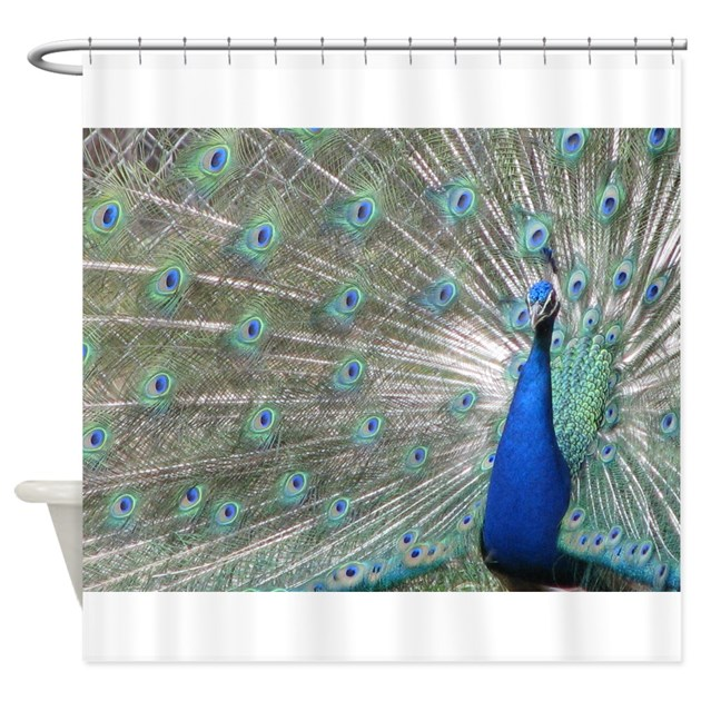 Peacock Shower Curtain By Barefacedpics