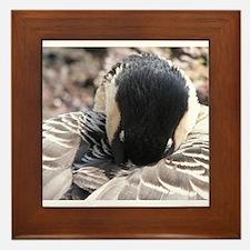 Nesting Framed Tile