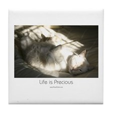 Arries the cat Tile Coaster