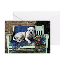 Pitbull Terrier Christmas Bob Greeting Cards (Pack