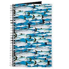 Montauk School of Fish Attack pattern 1 sq Journal