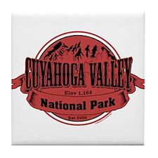 cuyahoga valley 2 Tile Coaster