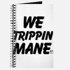 TRIPPIN Journal