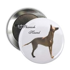 Pharaoh Hound Button