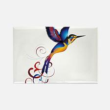 Colorful Hummingbird Rectangle Magnet