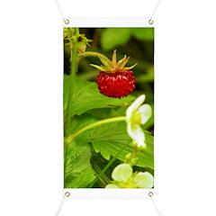 Wild Strawberry Banner