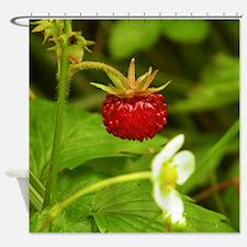 Wild Strawberry Shower Curtain