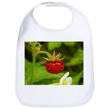 Wild Strawberry Bib