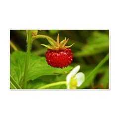 Wild Strawberry Wall Decal