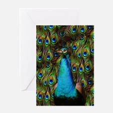Peacock Watch! Greeting Card