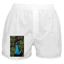 Peacock Watch! Boxer Shorts
