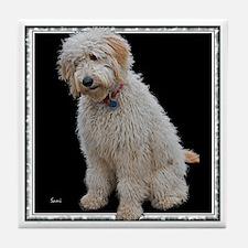 Goldendoodle: Wallace Tile Coaster